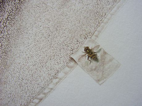 Sepia Towel, Watercolor on paper, 45x40.5cm, 2006-7, Detail