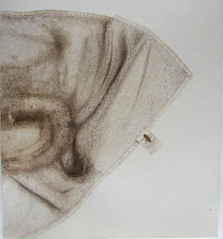 Sepia Towel, Watercolor on paper, 45x40.5cm, 2006-7